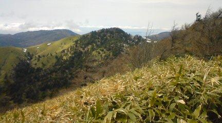 大川入山 010