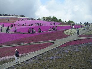 茶臼山と岩古谷山 010
