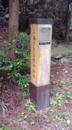 本宮山7.3 024