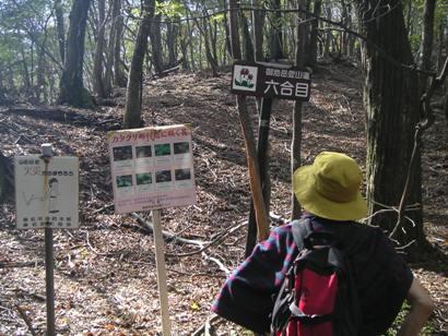 市民トレック御池岳2011,10 012