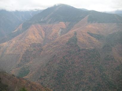 しらびそ高原2011,11 002