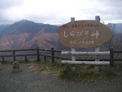 しらびそ高原2011,11 003
