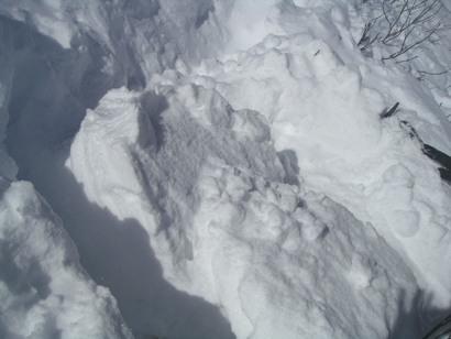 東三雪上訓練2011,12 007