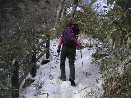 熊伏山2012,2 008