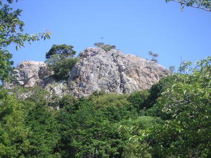 救助訓練立岩2012、6,10 001