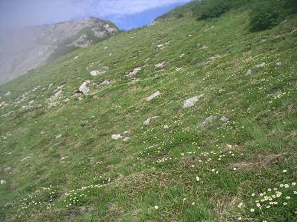 唐松岳2012、8、 047