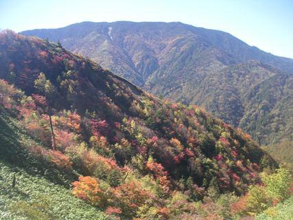 富士見台高原2012,10,19 013