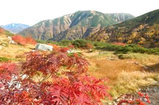双六南峰と鷲羽岳(左遠方)
