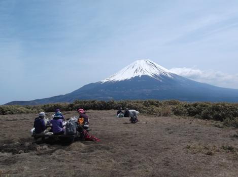 山梨竜ヶ岳2014,4,12 029