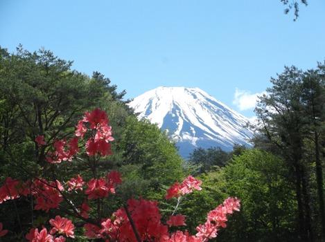 竜ヶ岳2014、5、17 001