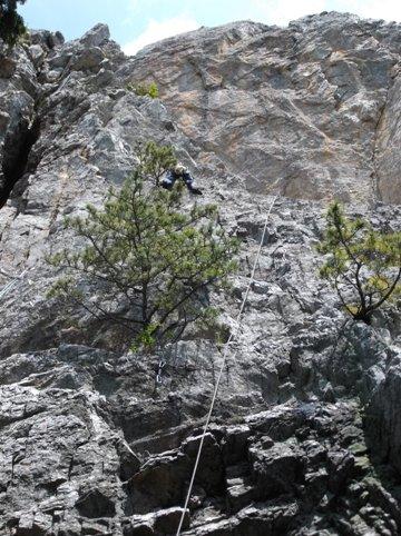 立岩2014、6,29  002