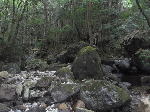 清水谷2014、8,3 006