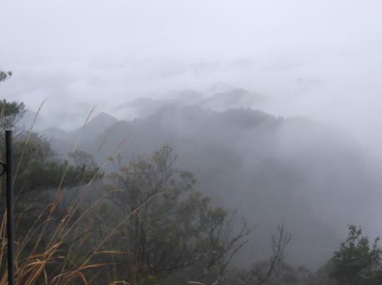 鳳来寺山2015、4、5 006