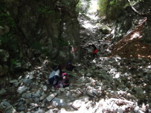 鎌ヶ岳2015、5,30 004