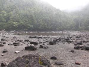 北八ヶ岳2015、8,23 050