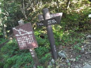 蝶ヶ岳2015、8,1 004