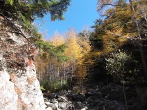 ミズガキ山2015、10、25 013
