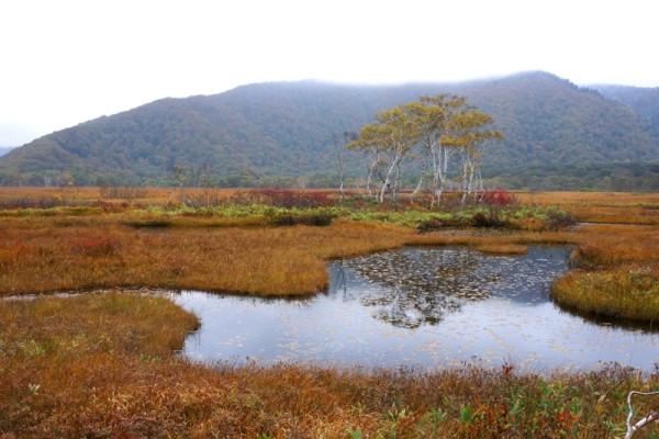 ③草紅葉と池塘