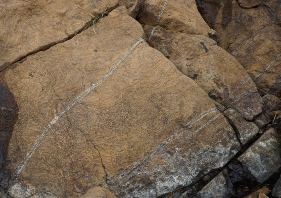 ⑫蛇の模様、蛇紋岩