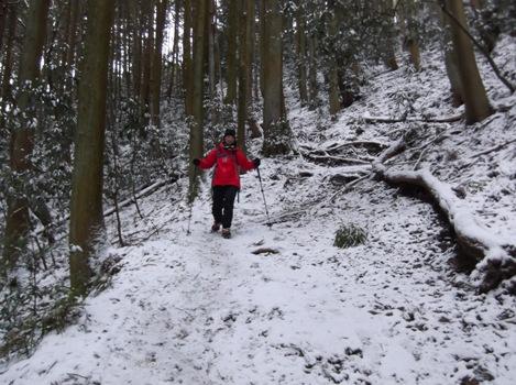 藤原岳2015、2,1 016