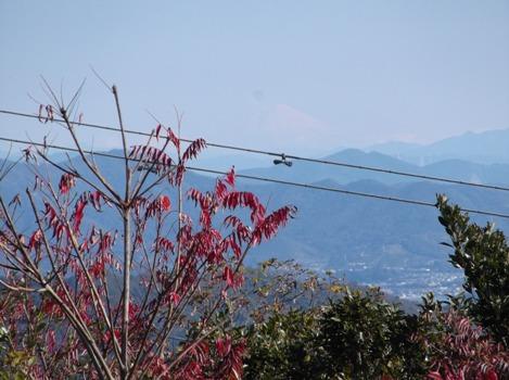 湖西連峰2014,12、8 004