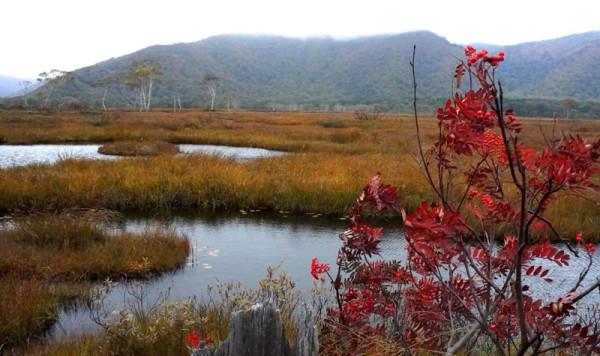 ④池塘と紅葉