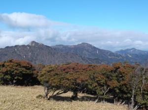 入道ヶ岳2016 ,1,9 008